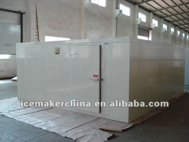 cold room about 60 cubic meter.JPG