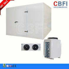 Trung Quốc Hotel Supermarket Commercial Blast Chiller With LG Electrical Components nhà máy sản xuất